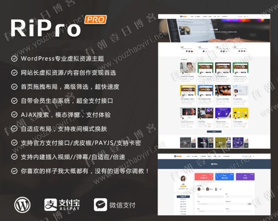 WordPress主题 Ripro v6.6 完整版分享-有朝壹日