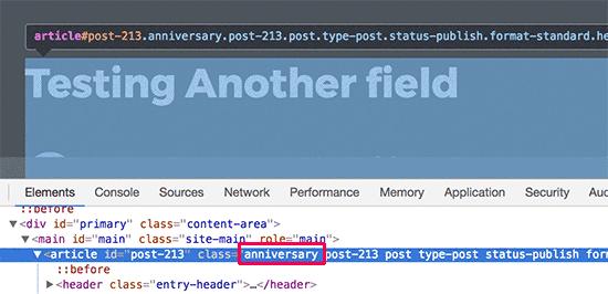 WordPress自定义字段101:提示,技巧和技巧-有朝壹日